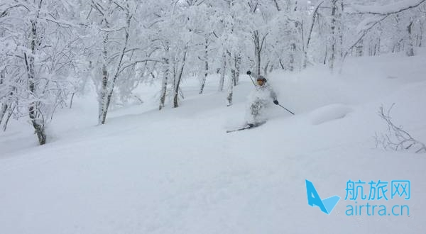 王晓飞滑雪教学——EASY SKI(18)双板综合运用【3】粉雪